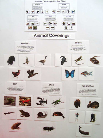 Animal Coverings - Advanced - M&M Montessori Materials
