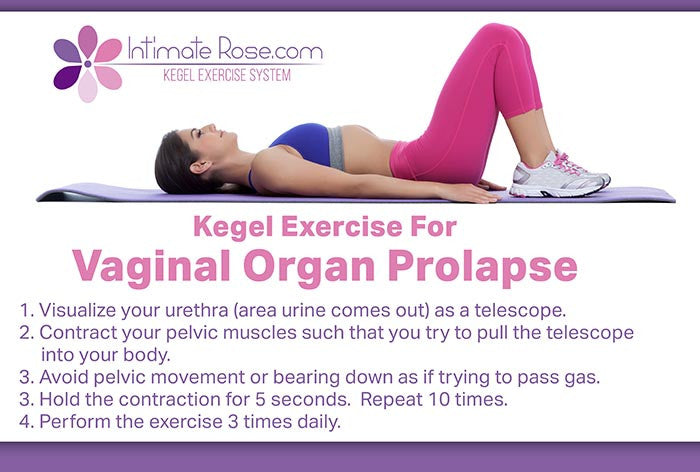 Pelvic Organ Prolapse (A Good in Bed Guide)
