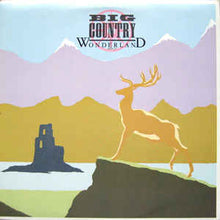 Big Country ‎– Wonderland