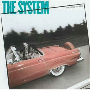 The System ‎– Don't Disturb This Groove