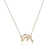 Aquarius Zodiac Sign Astrology Star Sign Constellation Necklace
