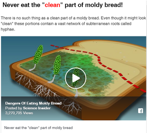 Dangers Of Eating Moldy Bread