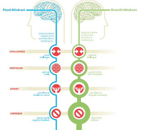 fixed mindset growth mindset attitude
