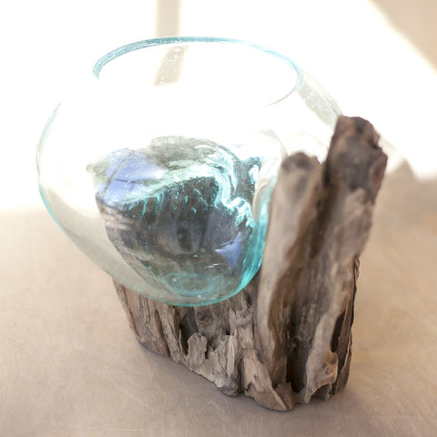 Driftwood and Glass Vase No. 4