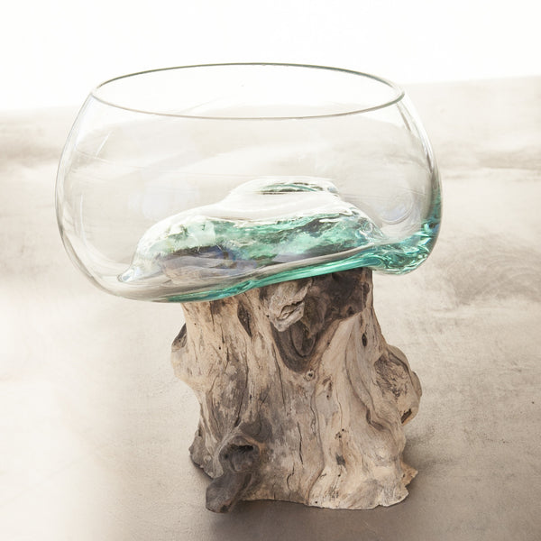 Driftwood and Glass Vase No. 1