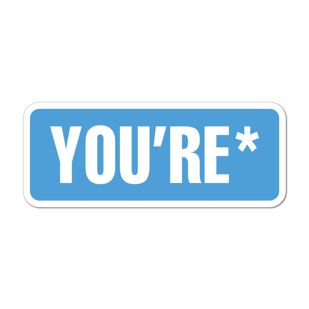 Your Youre Correct Spelling Car Sticker Decal