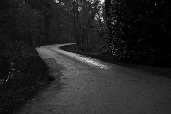 Black & white road in the forest Canvas
