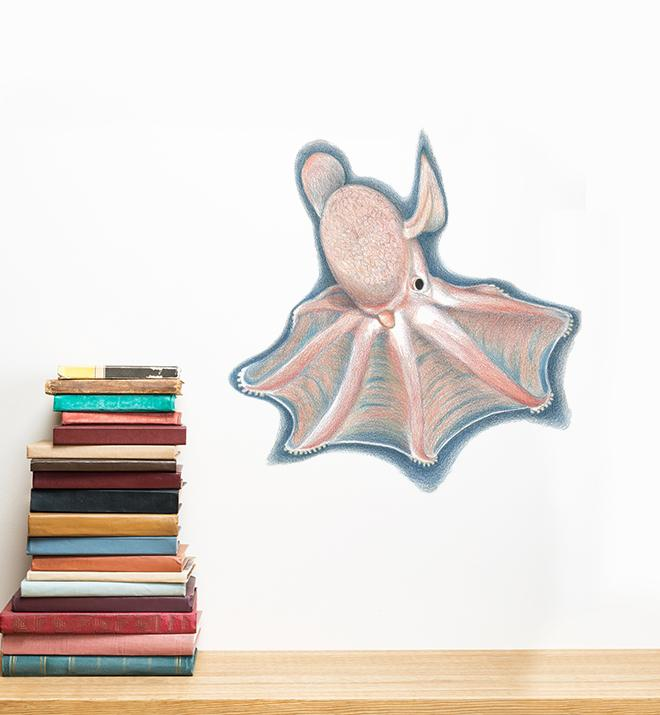 Spread out Dumbo Octopus Wall Sticker