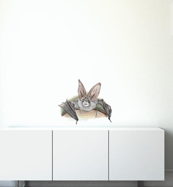 Crawling Bat Wall Sticker