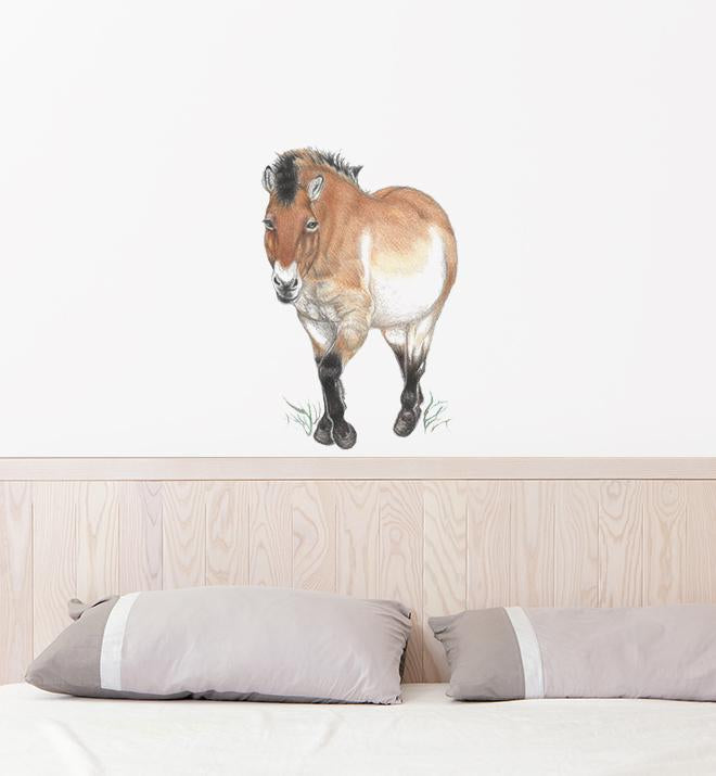 Small Pony Wall Sticker