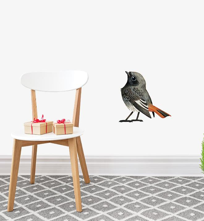 Black Redstart Bird Wall Sticker