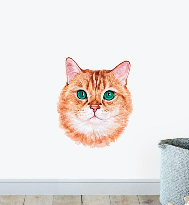 Scottish Straight Cat Wall Sticker