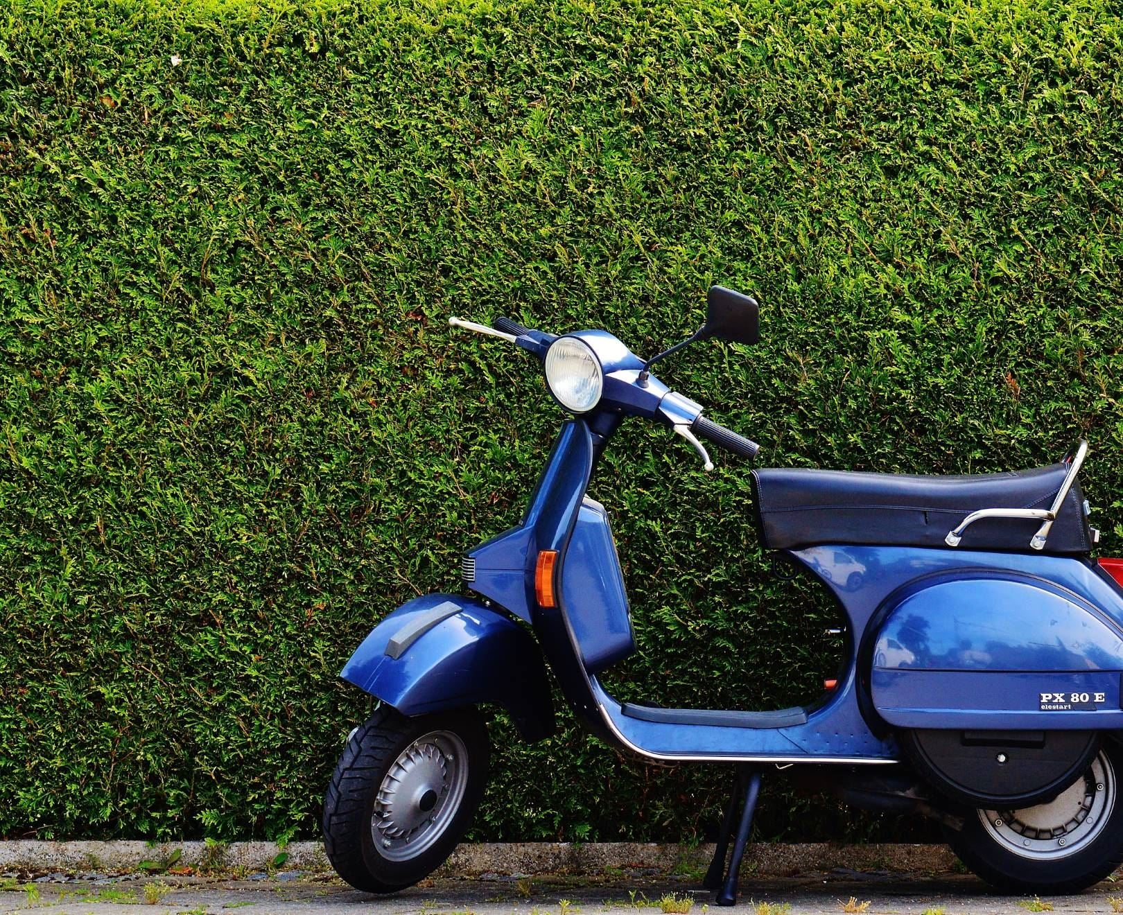 Scooter In Front Of Hedge