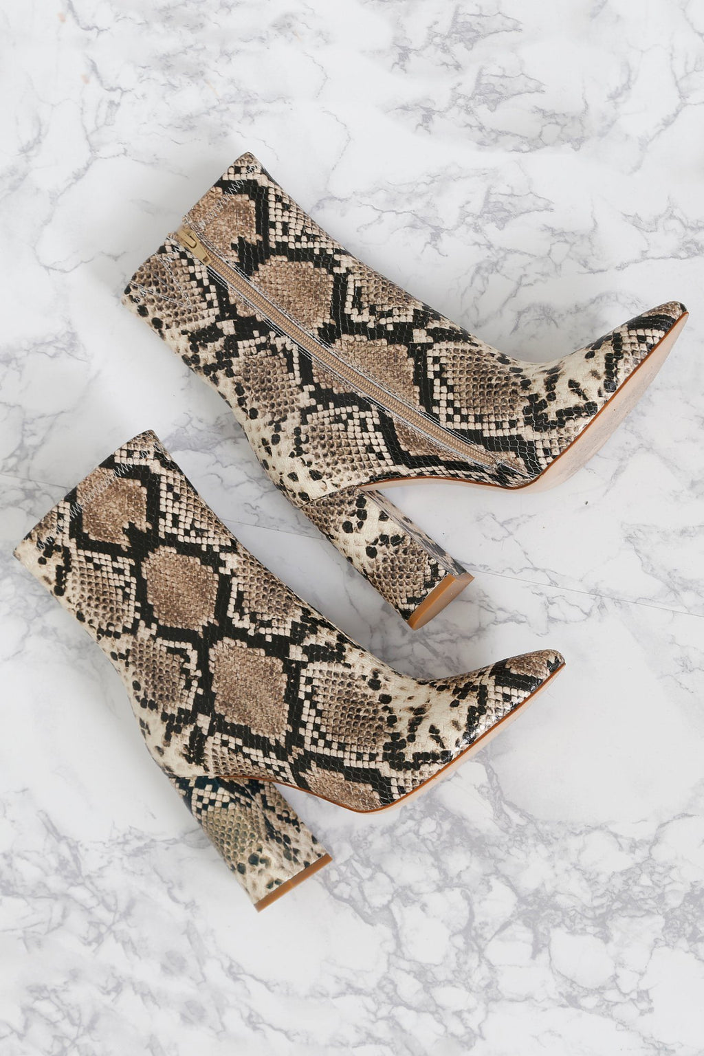 SCARLET EXCLUSIVE - JEFFREY CAMPBELL | Snake Siren Ankle Boot - Taupe/ Black