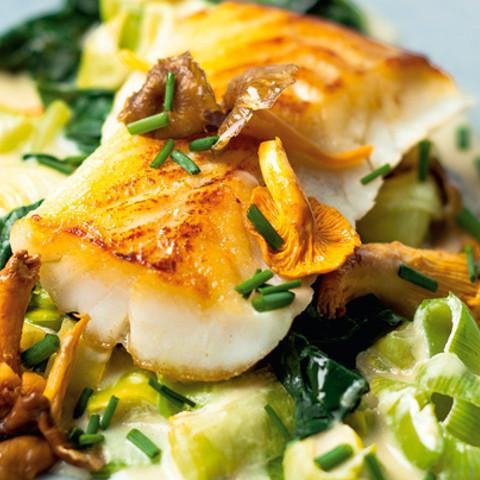 Atlantic Cod Loins