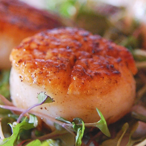 Jumbo Atlantic Sea Scallops (20-40 portions)