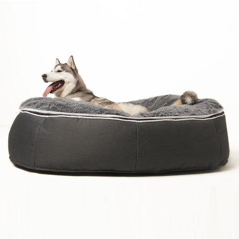 It's a dog's life with Ambient Lounge pet beds