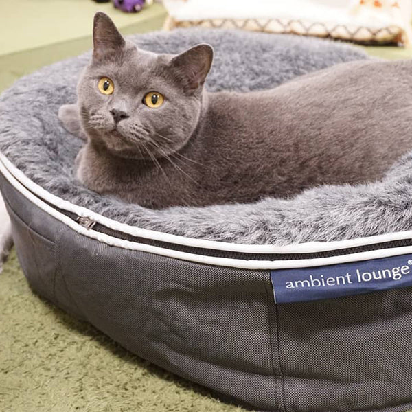 Luxury Indoor/Outdoor Cat Bed