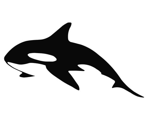 Killer Whale (a) Die Cut Vinyl Decal Sticker - Decals City