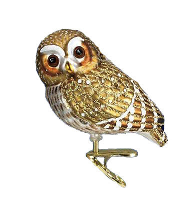 Old World Christmas® Pygmy Owl Clip Ornament