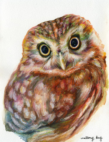 Ina May Owlet Watercolor Print, Large