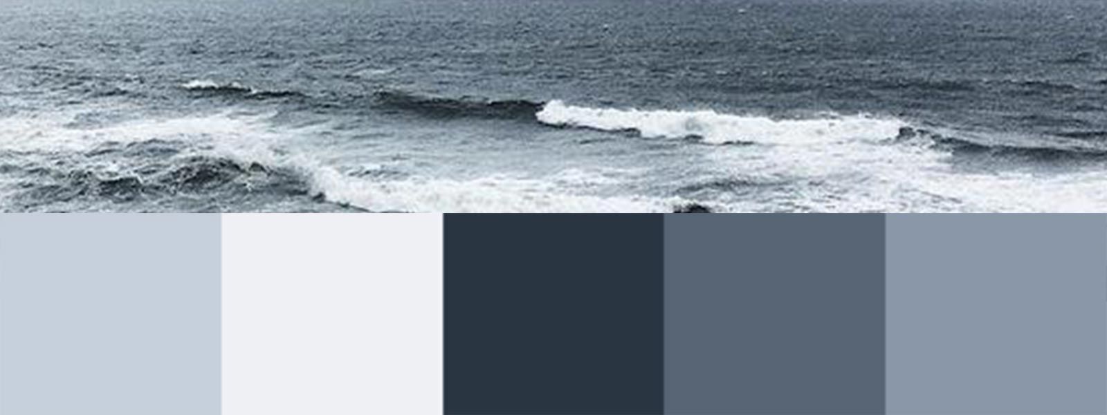 Create Your Own Nature-Inspired Color Palette