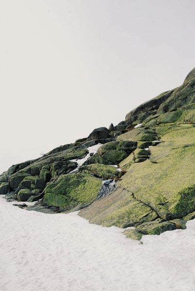 rolling green hills beach natural vsco instagram