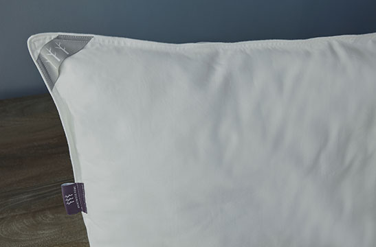 Crystal Cove bolster Pillow