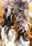 Feather Boa Greys,Black and White Approx 1.7 Metres Long