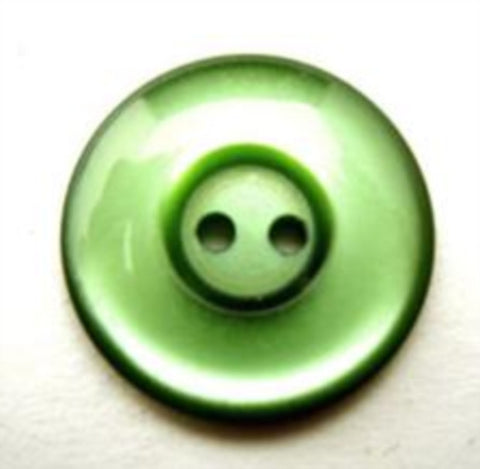 B11207 19mm Bottle Green Polyester 2 Hole Button - Ribbonmoon