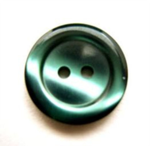 B13430 17mm Tonal Holly Green Polyester 2 Hole Button - Ribbonmoon
