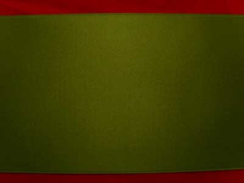 R5832 100mm Loden Green Double Faced Satin Ribbon by Berisfords - Ribbonmoon