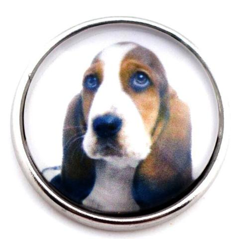 Basset Hound Snap - Gracie Roze Yourself Expression Snap Jewelry