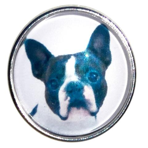 Boston Terrier Face Snap - Gracie Roze Yourself Expression Snap Jewelry