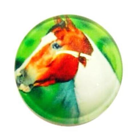 Brown and White Horse Snap - Gracie Roze Yourself Expression Snap Jewelry