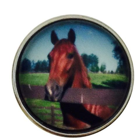 Beautiful Brown Horse Snap - Gracie Roze Yourself Expression Snap Jewelry