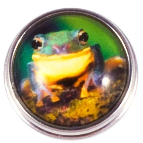 Green Frog Snap - Gracie Roze