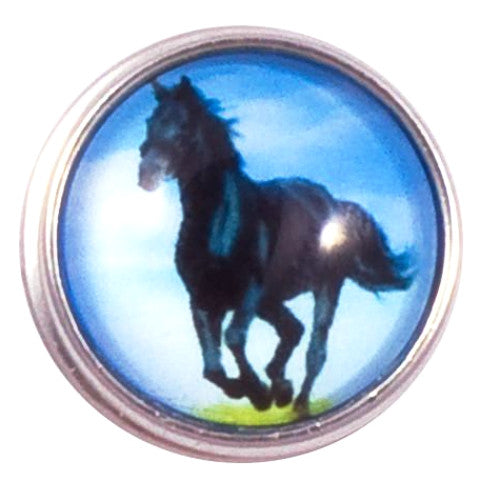 Horse Black Beauty Popper
