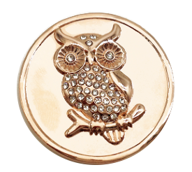 Rose Gold Owl Coin - Gracie Roze