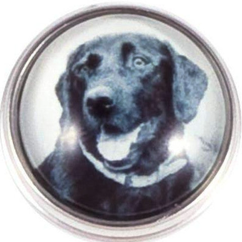 Black Lab Dog Snap - Gracie Roze Yourself Expression Snap Jewelry
