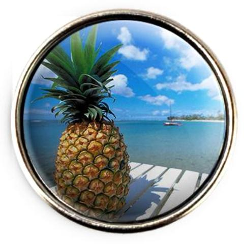 Tropical Pineapple Snap