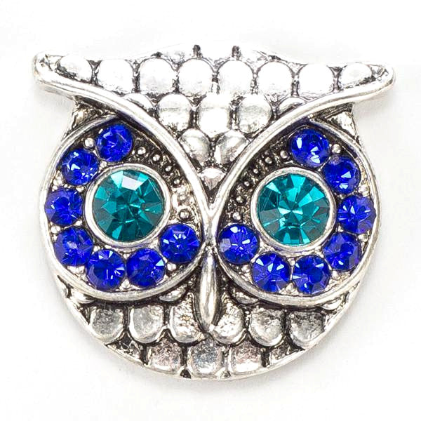 Owl With Blue Eyes Popper