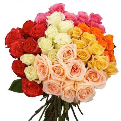 Assorted Color Roses (150 Extra Long Stems) Includes Free Shipping