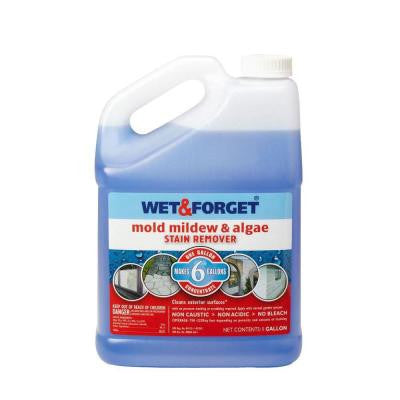 1 gal. Mold Mildew and Algae Stain Remover