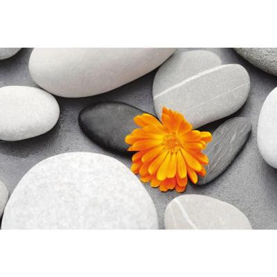 45 in. x 69 in. A Heart Among Stones Wall Mural
