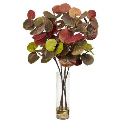 49 in. H Assorted Giant Sea Grape Leaf with Cylinder Silk Plant