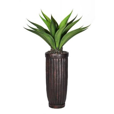 53 in. Tall Giant Aloe in Planter