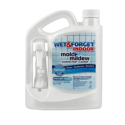 64 oz. Indoor Mold and Mildew Disinfectant Cleaner