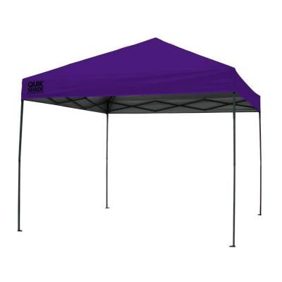 10 ft. x 10 ft. Purple Instant Canopy