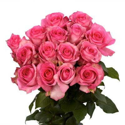 Pink Roses (50 Stems) Includes Free Shipping